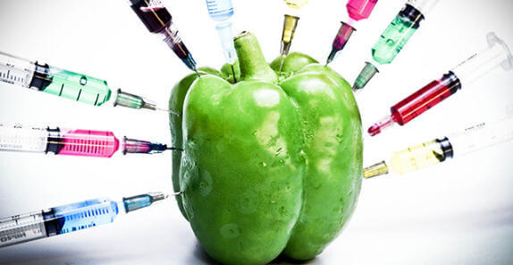 Resultado de imagen para OGM
