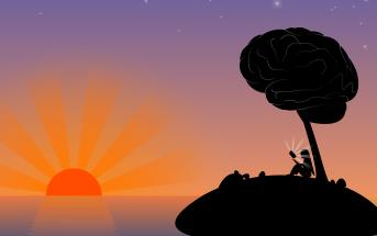 ¿Cómo recibe e interpreta el cerebro los mensajes?