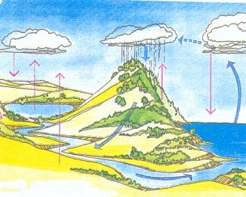 ¿Qué es el ciclo del agua?