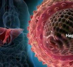 Diferencia entre Hepatitis B y Hepatitis C