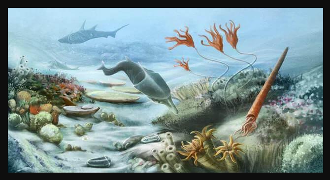 Datos de la Era Paleozoica