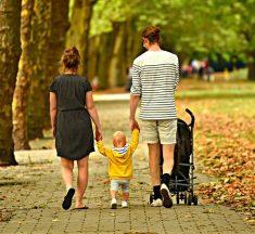 Ensayo sobre Importancia de la Familia – Ensayo Sobre La…