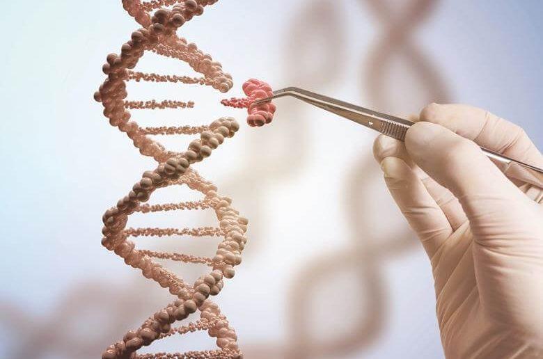 Ventajas y desventajas de las mutaciones en la biologia