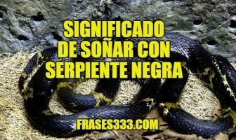 sonar con serpiente negra