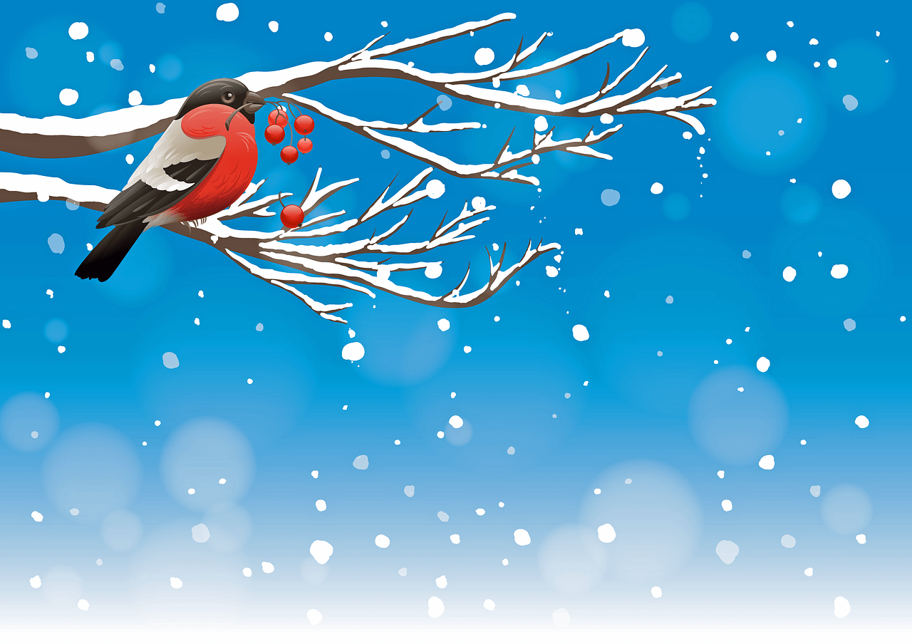 Hermosas Frases De Navidad