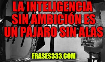 Frases de Salvador Dali