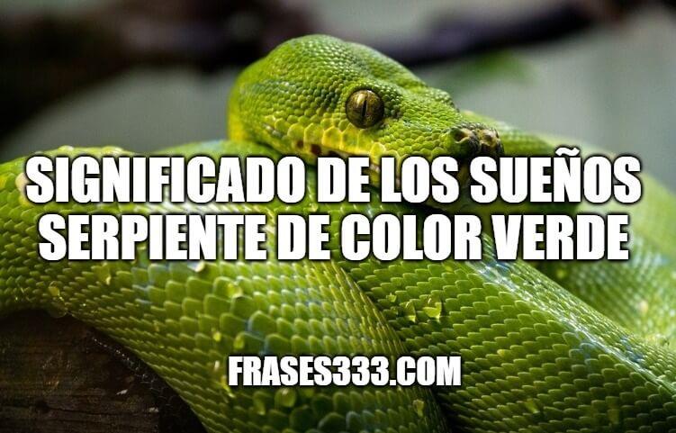 Sonar Con Serpiente verde