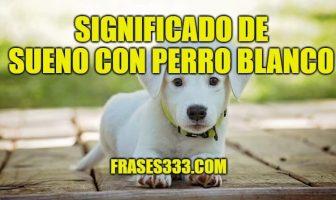 Significado de Sueño con Perro Blanco
