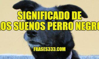 Significado de Los Suenos Perro Negro - Sueña con Perros Negro