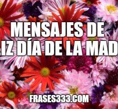 Mensajes De Feliz Día de la Madre