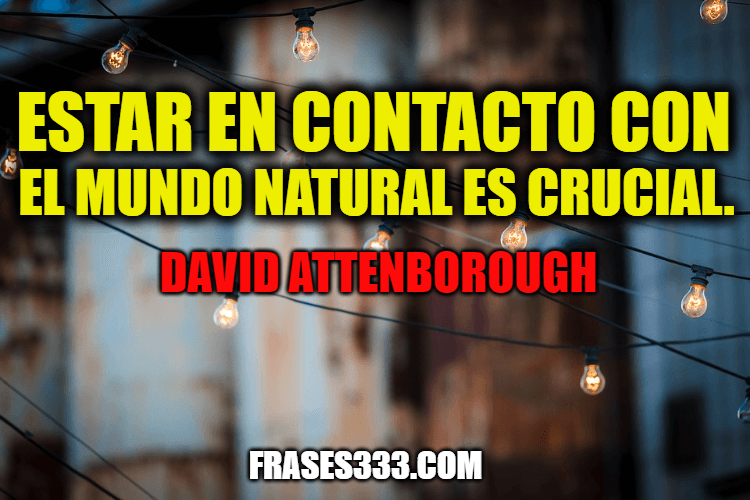 Frases de David Attenborough