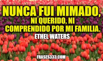 Frases de Ethel Waters