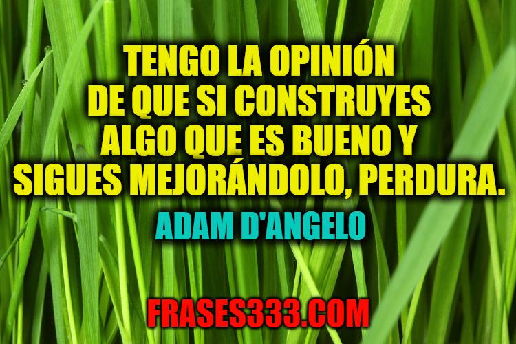 Frases de Adam D'Angelo