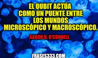 Frases de Aaron D. O'Connell