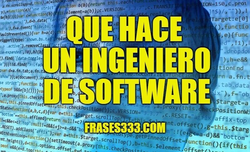 ingeniero de software