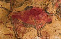 Pintura rupestre de un bisonte, Altamira, España.