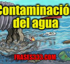Contaminación del agua: una introducción