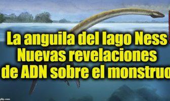 La anguila del lago Ness - Nuevas revelaciones de ADN sobre el monstruo