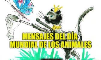 Mensajes del Día Mundial de los Animales