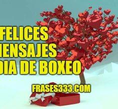 Mensajes Felices del Día del Boxeo – Frases de Día del Boxeo