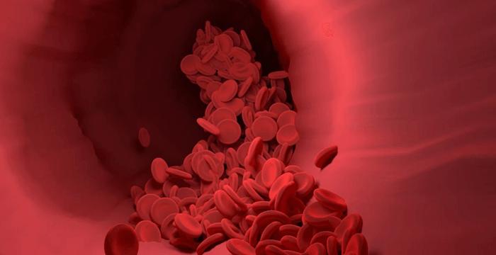 ¿Cuál es la composición de la sangre humana?
