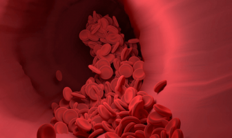 ¿Cuál es la definición de glóbulo rojo? Información sobre los glóbulos rojos