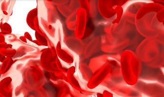 Función de la hemoglobina: ¿cuál es la definición de hemoglobina?