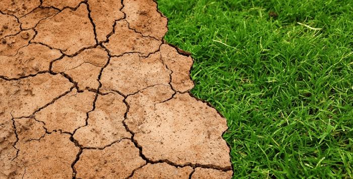 Características del suelo: Horizontes, perfiles y textura del suelo