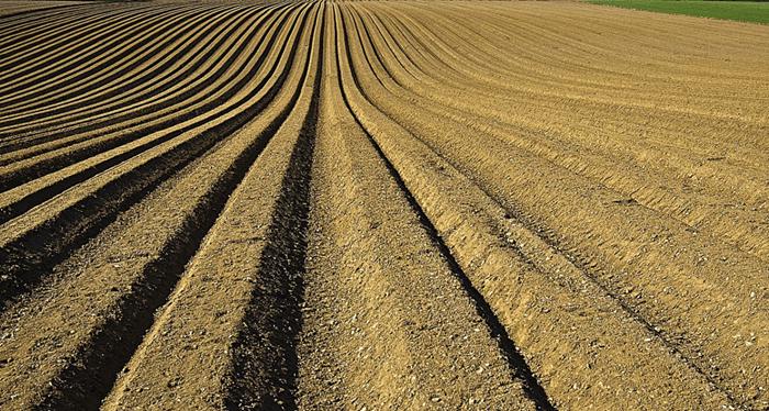 Información sobre el suelo - ¿Cuál es la descripción y usos del suelo?