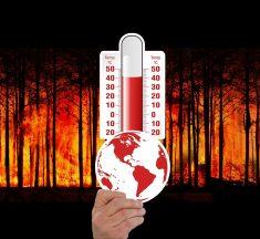 ¿Por qué la temperatura es importante para la vida?