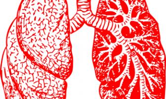 Bronquitis y Neumonía en Niños: Síntomas, Causas, Tratamiento