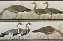 Los gansos en la historia: el antiguo Egipto, los romanos y los antiguos británicos