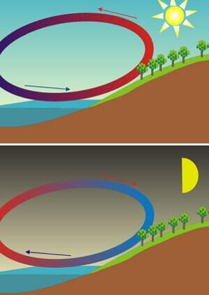 ¿Cómo hacen que el aire se mueva por las diferencias de temperatura?