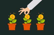 ¿Cómo organizar la contabilidad de su empresa?