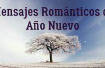 Mensajes románticos de feliz año nuevo para mi amada