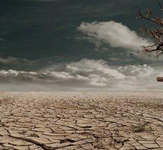 ¿Cómo podemos conservar el suelo? ¿Qué es la erosión del suelo?