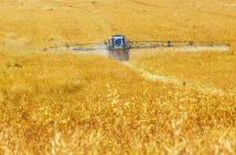 ¿Qué es la fertilización? ¿Cómo se mantiene fértil el suelo?