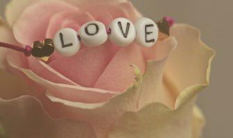 Flores de San Valentín - Origen de la rosa como flor de San Valentín