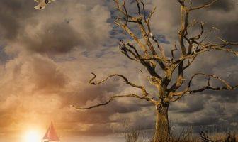 Absoluta (en Filosofía) - ¿Qué es la Verdad Absoluta en la Filosofía Antigua y Moderna?