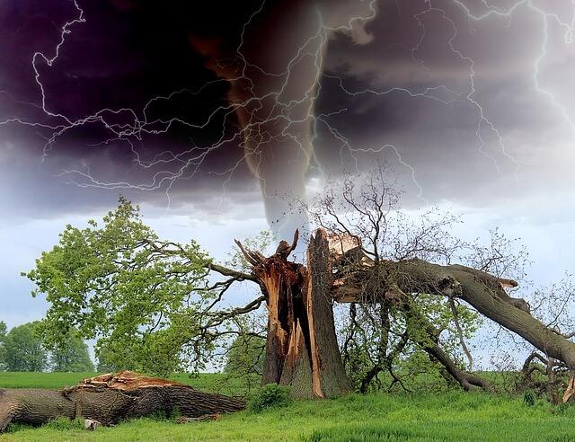 ¿Qué causa las tormentas? ¿Cómo ocurren las tormentas y sus tipos?