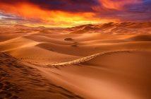 Información sobre desiertos - Tipos de desierto - Clima y accidentes geográficos